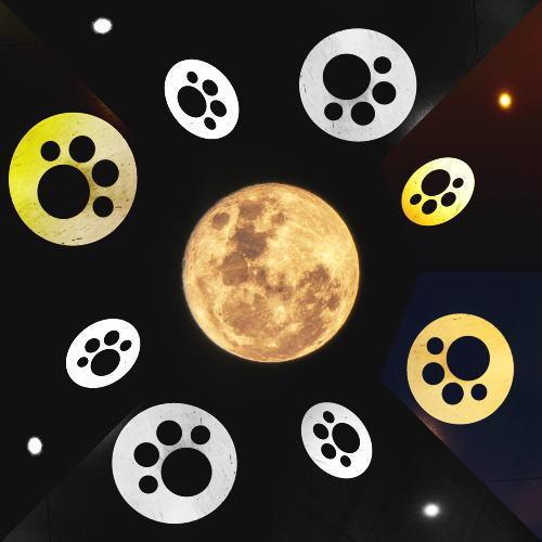 02.8月 足跡が月の周りをグルグル.jpg
