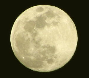 25 super moon.jpg